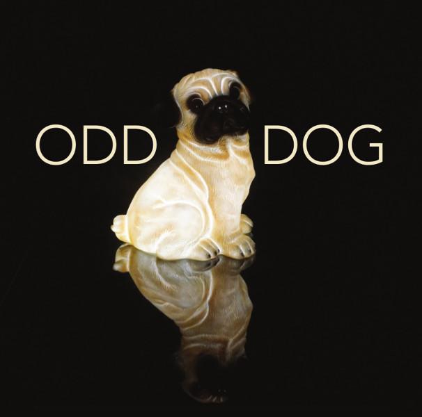 Odd Dog